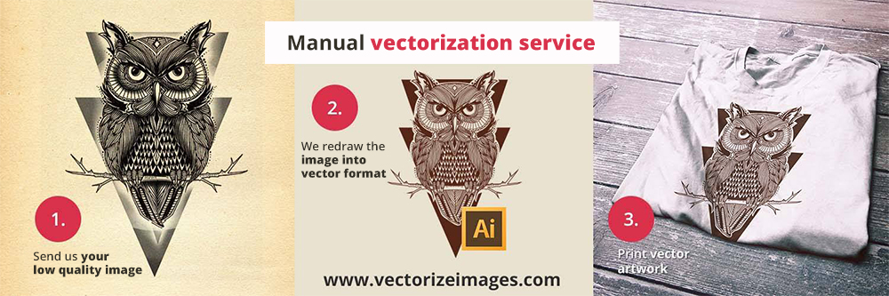 Free vectorization tool: Vectorize an image for free